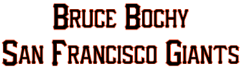 Bruce Bochy endorsement link